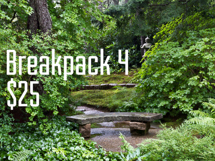 Breakpack 4: How to Swing