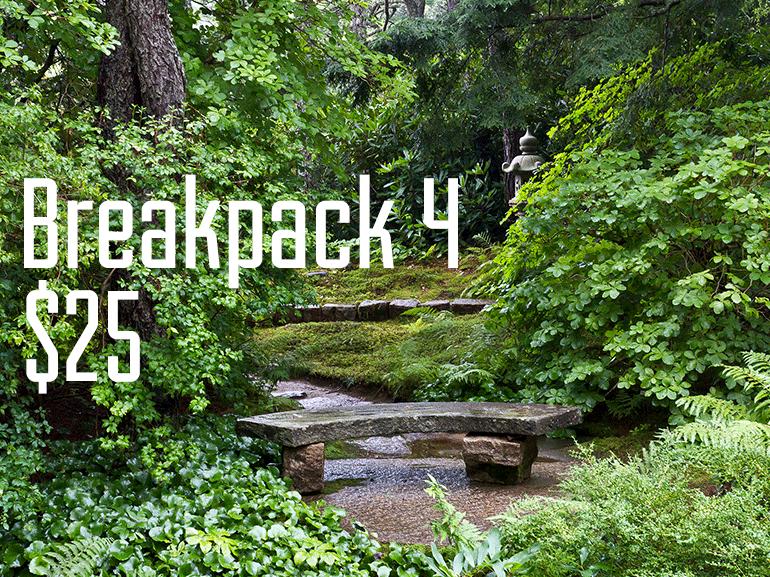 Breakpack-4-$25