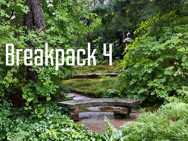 Breakpack 4